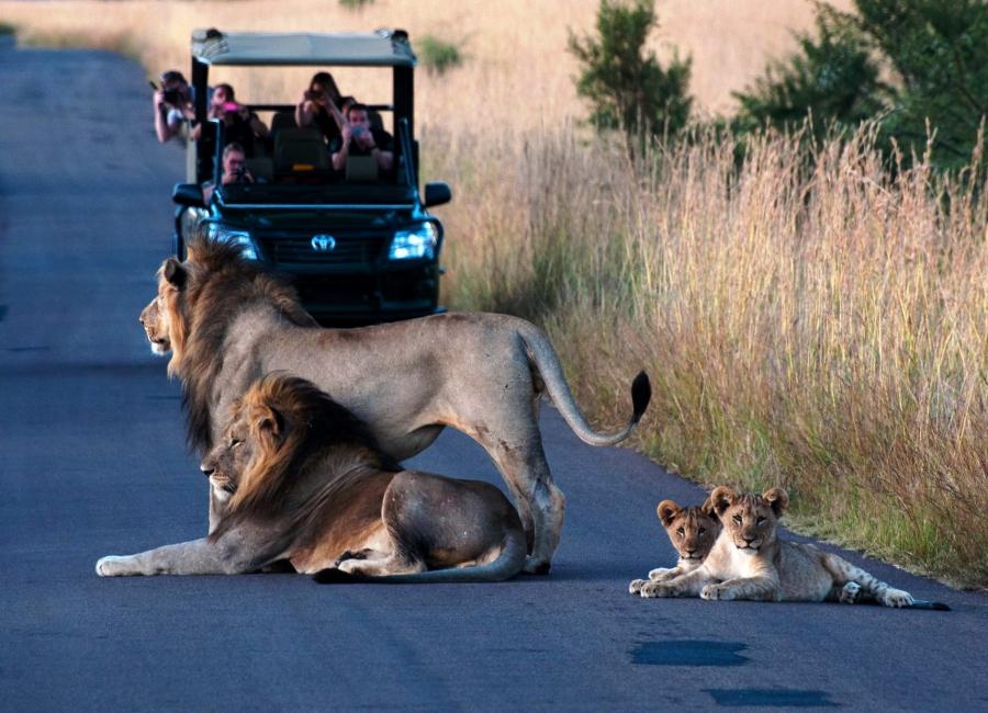 О моём путешествии в Танзанию