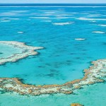 Great Barrier Reef banks on Aussie PM
