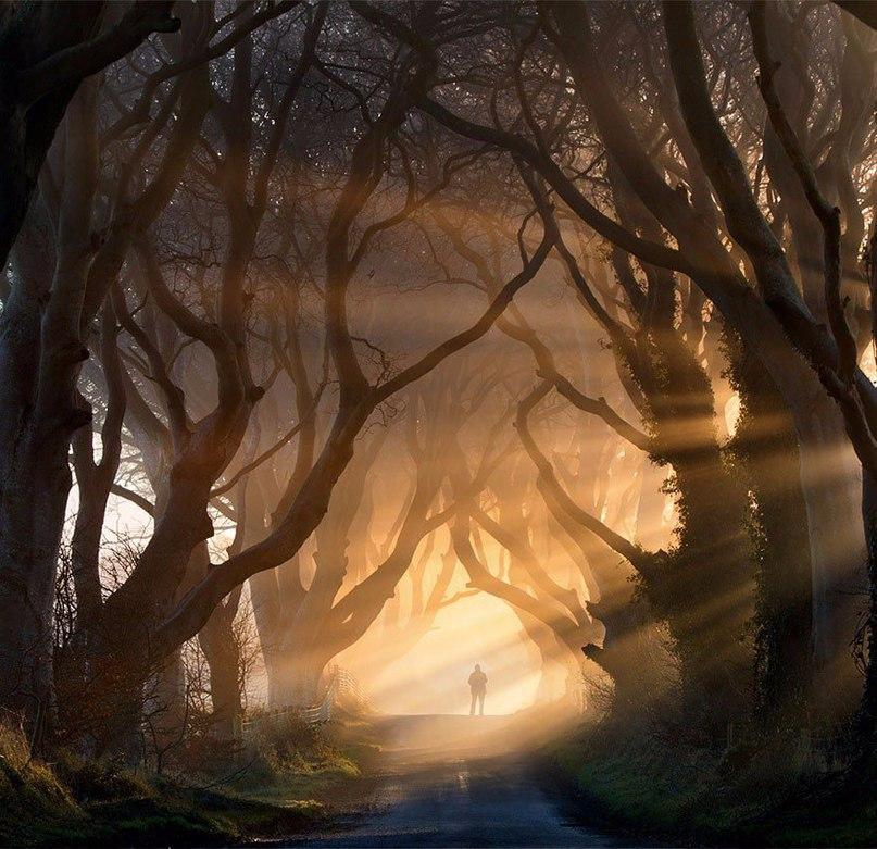 «Темный тупик»: загадочное место в Северной Ирландии