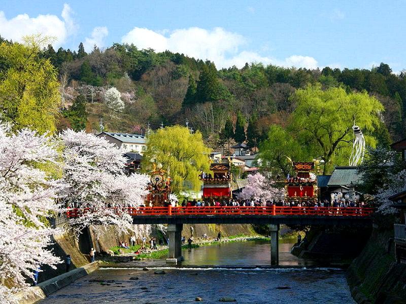 Такаяма: мимо сакуры цветущей