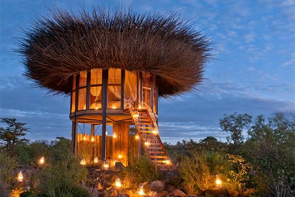 В Кении открыли пятизвездочный отель-«гнездо»