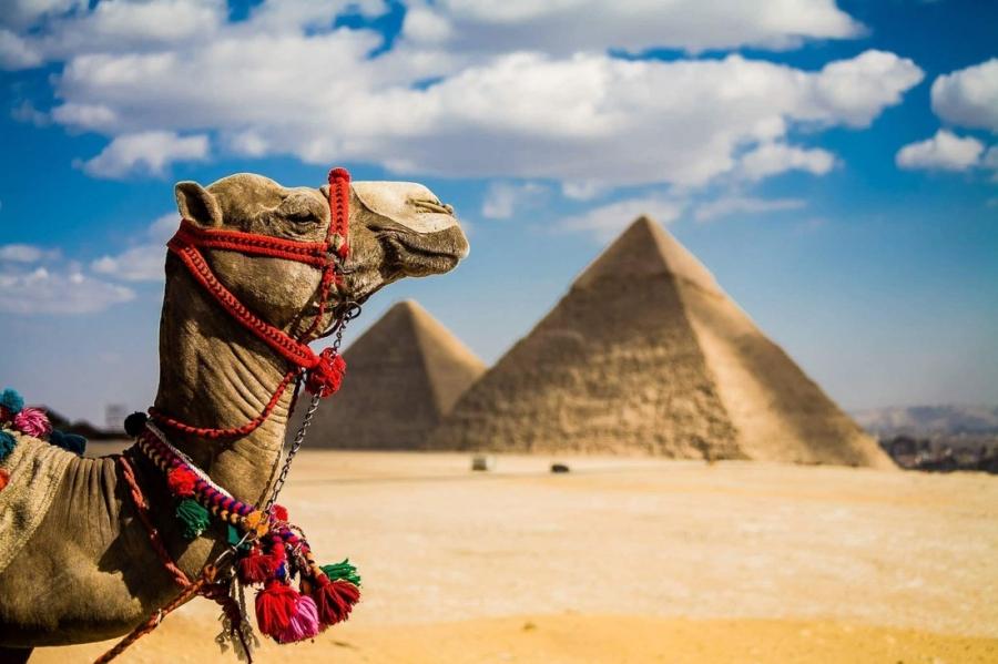 Туры в Египет из России