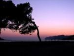 Delve deeper in Mallorca