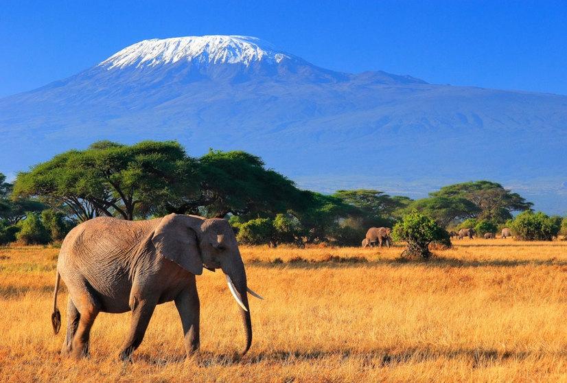 Кения намерена увеличить число туристов, приезжающих из Азии