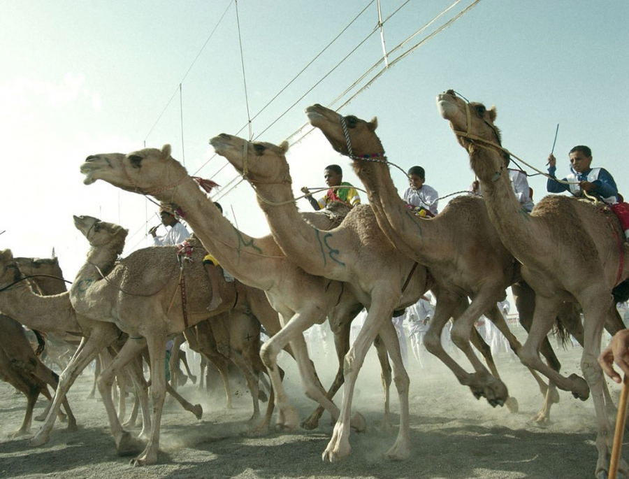 Минтуризма Омана объявило конкурс на создание туристического бренда провинции Сур