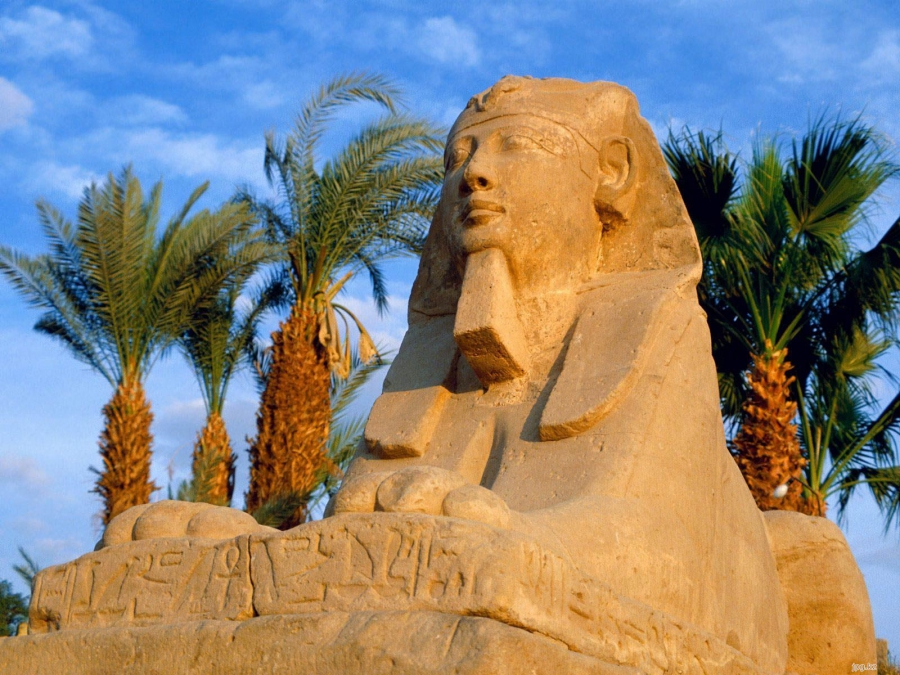 Египет принял четверть миллиона туристов по программе субсидирования рейсов
